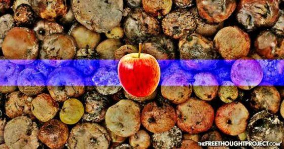 bad-apple-696x366